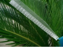 4 wall Rectangle Polycarbonate Sheet
